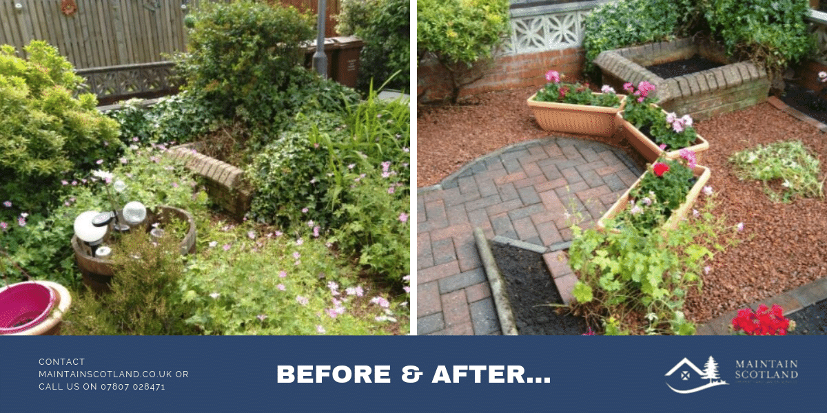 maintain-scotland-garden-transformations-gallery